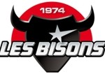 logo_bisons